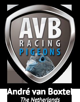 André van Boxtel Racing Pigeons Logo